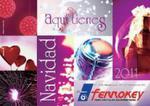 Catálogo Navidad 2011 Ferrokey